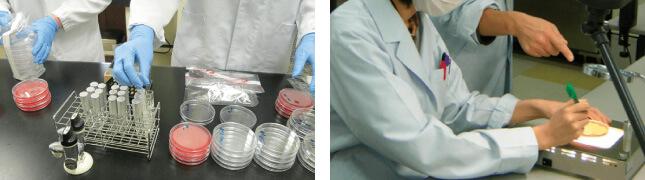微生物制御