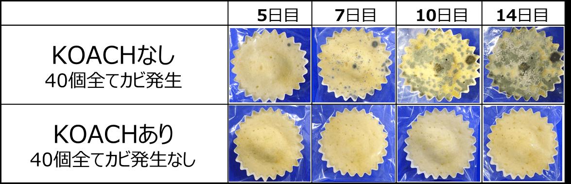落下菌試験 結果